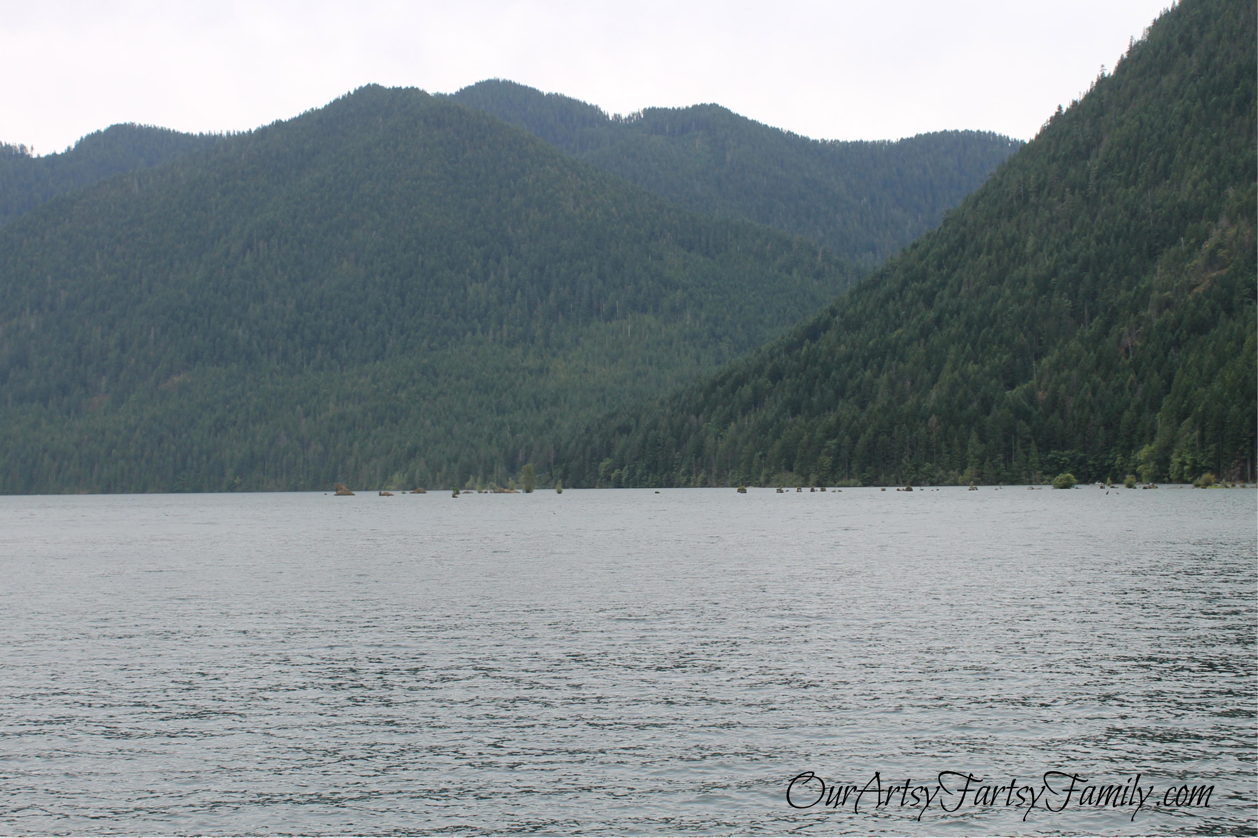 7-11-2020 Lake Cushman Artsy IMG_1051
